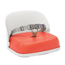 Oxo Tot Perch Youth Booster Orange Strap